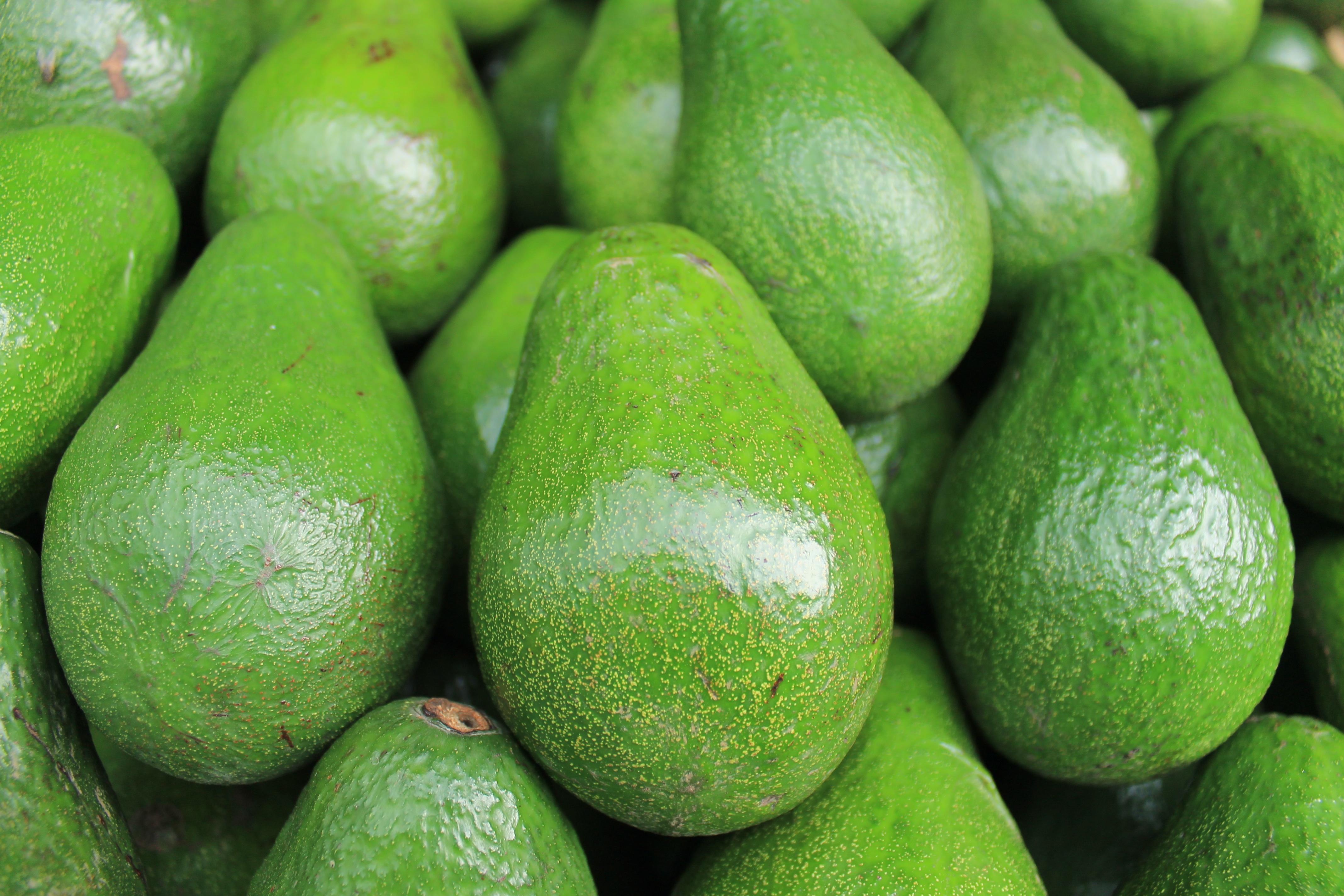 smoke point avocado oil