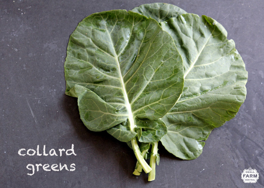 """Cheesy"" Collard Wraps"