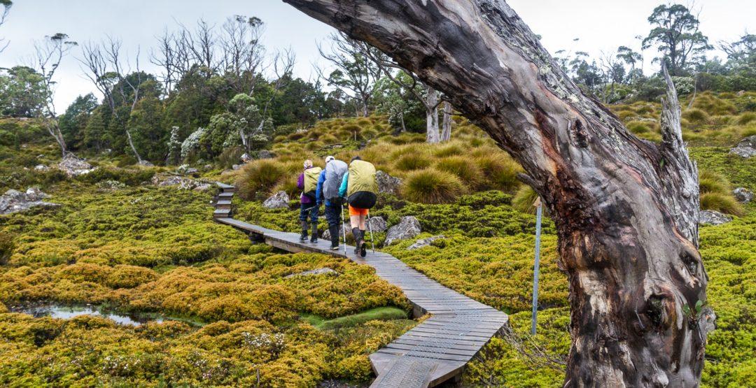 supplements for hiking trekking travel