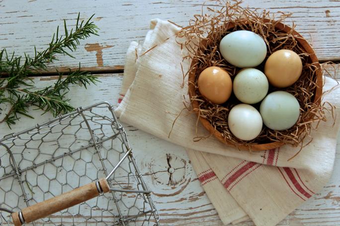 Eggs-food-elimination