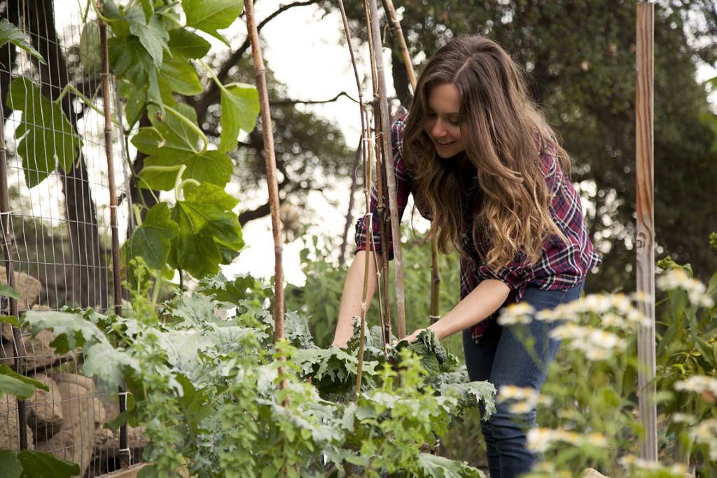 Julie-Morris-Garden