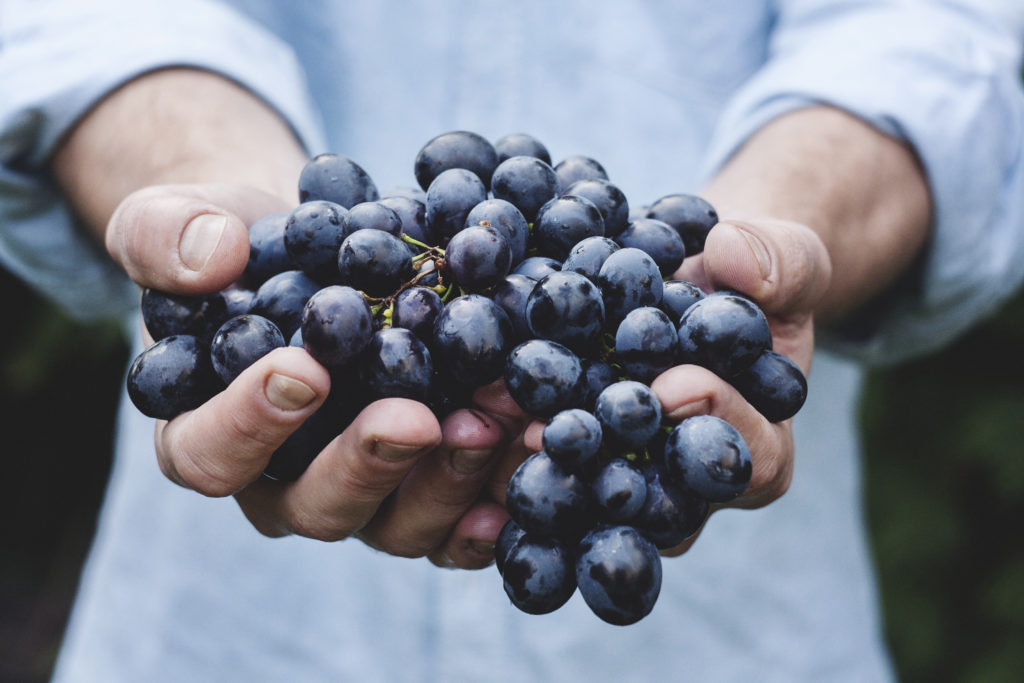 the best cancer diet grapes