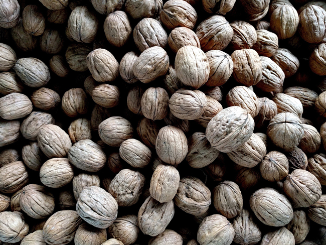 walnuts best cancer diet